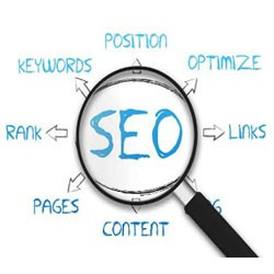SEO Services in Thane, Mumbai, India